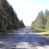 Дорога их Хвойной в Мякишево