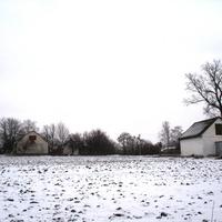 Многолетний дуб (вид с ул. Вокзальная)