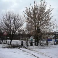 Перед автобусной остановкой
