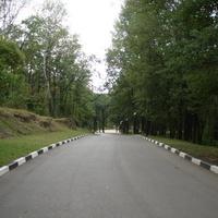В парк