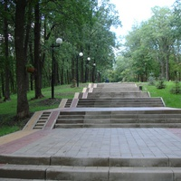 Выход из парка