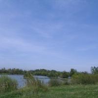 околиці Дашави