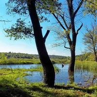 Панорама Булавинки у Лесного
