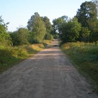 Дорога в деревне Шупени