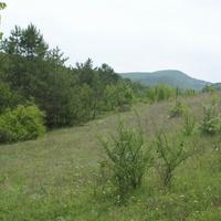 Небольшая поляна на вершине горы