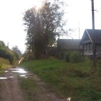 деревня Гостевщина, август 2012 года
