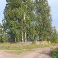 Гостевщина, крайний дом на развилке дорог из деревни и дороги в Любницу