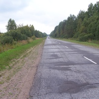 дорога Яжелбицы-Демянск, место у выезда из Гостевщины, направление в сторону Лутовёнки,до которой  около 5 км