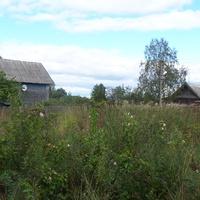 деревня Сосницы Валдайского района, август 2012 года