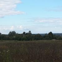 деревня Сосницы, вид с дороги Быльчино-Сосницы.
