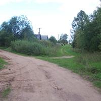 деревня Сосницы Валдайского района, август 2012 года, начало дороги в Быльчино