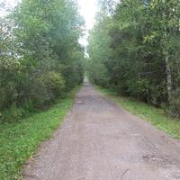 деревня Сосницы Валдайского района, август 2012 года, начало дороги в деревню со стороны дороги Яжелбицы-демянск