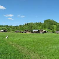 деревня Борово