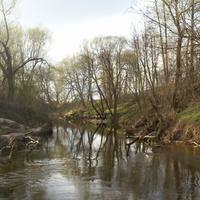 Природа у реки Каширка