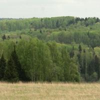 Леса Святогорово