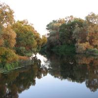 река Протва на закате (д.Залучное)