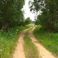 между Залучным и Дуброво