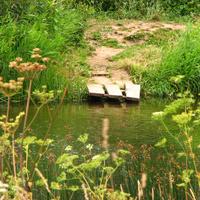 река Протва, мостик у лав (д.Залучное)