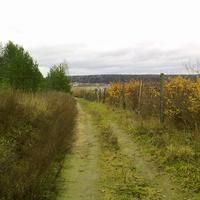 дорога вдоль Дубровского кладбища (слева)