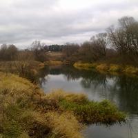река Протва (осень 2011 г. в д.Залучное), вид с лав