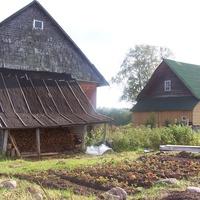 деревня Долматово Валдайского района, август 2012 года