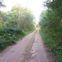 Дорога из Долматово В Гостевщину, до дороги Демянск-Яжелбицы-2 км, от дороги Демянск- Яжелбицы до Гостевщины -0.5 км