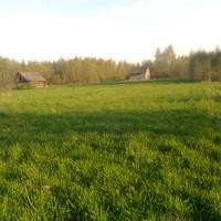 деревня Заболотье