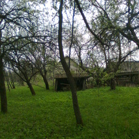 деревня Заболотье родные мне места
