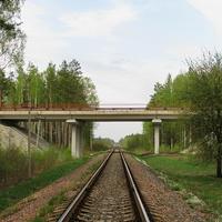 Путепровод объездной автодороги, перегон Красный Брод - Брожа
