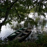Природа села Гуево