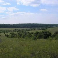 Вид с хутора