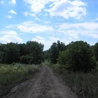 Дорога на восемьдесят пятый квартал