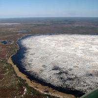 Ясунт. Западно-Сибирская равнина - край болот и озёр. 9 мая 2010