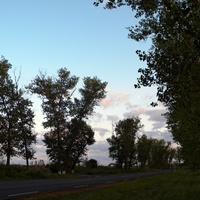Природа на окраине села Куриловка