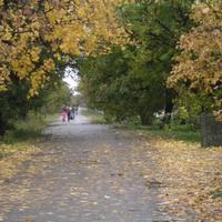 Село  Степановка