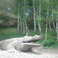 Крокодил в курортном парке