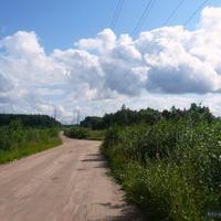 шевелёво дорога от станции