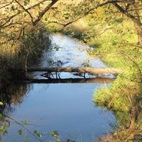 река Должанка