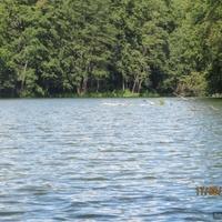 Озеро Шелеховское