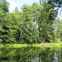 Северная часть озера