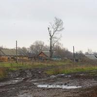 Вид на Старые выселки