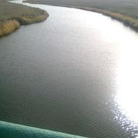 Река Чижа -1