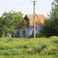 Дом под старой черепицей