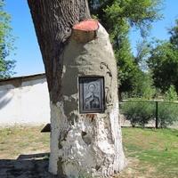 Икона святой блаженной Матроны Московской на 400-летнем дубе