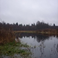 "Озеро ""Нестерово"""