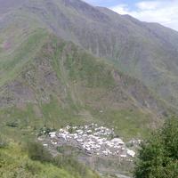 Кутум