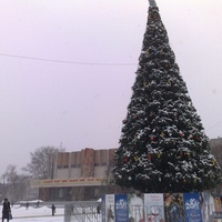 Новорічна ялинка 2011