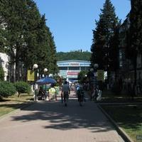 Рынок с ул. Галины Петровой