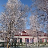 Зима. Больница