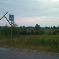 Поле в Борисовской